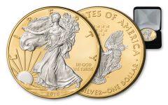 2018 1 Dollar 1-oz Silver Eagle Gilded 24 Karat Gold Background