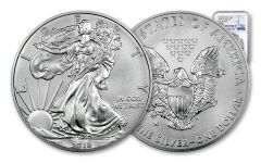 2018-W 1 Dollar 1-oz Burnished Silver Eagle NGC MS70 Early Releases