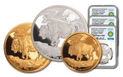 2019 Smithsonian Gold & Silver Buffalo at the Castle 3-Piece Set NGC PF70UC - Niekerk Signed Label