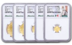 2019-Mo Mexico Gold Libertad 5-pc Fractional Set NGC MS70 First Releases w/Mexico Label