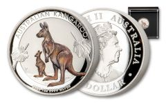 2020 Australia $1 1-oz Silver Kangaroo Colorized High Relief Uncirculated Coin