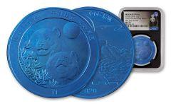 CHINA 2020 10GM BLUE TI MOON PANDA NGC MS70 FDI