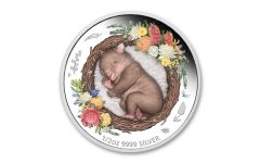 Australia 2021 1/2-oz Silver Dreaming Down Under Wombat Colorized Proof