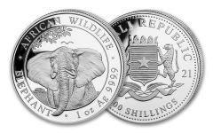 2021 Somalia 100 Shillings 1-oz Silver Elephant Gem BU