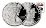 2017-W 1 Dollar 1-oz Silver Eagle Proof NGC PF70UCAM Eagle Label