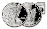 2017-W 1 Dollar 1-oz Silver Eagle Proof NGC PF69UCAM Gold Star Label