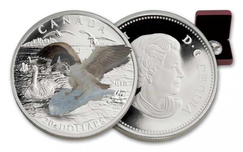 2017 Canada 20 Dollar 1-oz Silver Goose Approaching Canada 3D Proof
