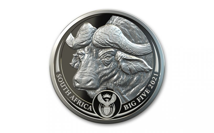 2021 South Africa 1-oz Silver Big 5 Buffalo Proof