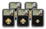2018 China Gold Panda Prestige Set NGC Gem First Day Of Issue Chao Signed - Black