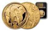2019 South Africa 1-oz Gold Big 5 Elephant NGC Gem Proof First Day of Issue w/Black Core & Tumi Signature