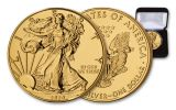 2020 $1 1-oz Silver American Eagle BU Gilded in 24 Karat Gold