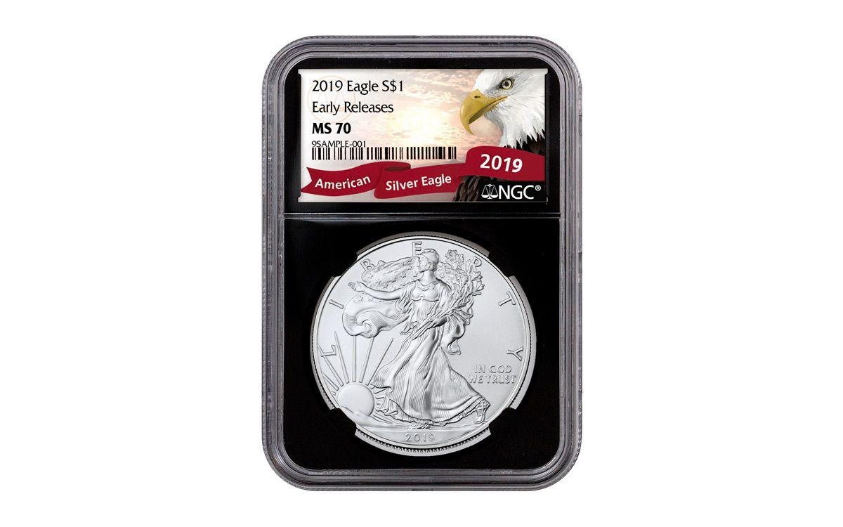 NGC MS70 2019 American Silver Eagle