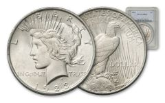 1923-P Peace Dollar NGC/PCGS MS64