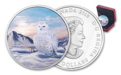 2018 Canada 2-Ounce $30 Silver Snowy Owl Gem Proof - Arctic Animals and Northern Lights