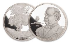 2019 Smithsonian 1-oz Silver Buffalo at the Castle Proof