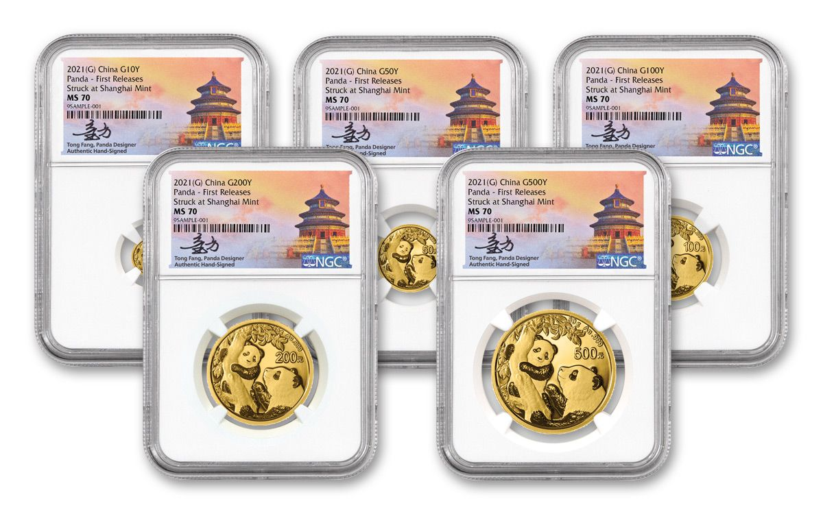 BESTOYARD 10 Sets Chinese Fortune Coins Gold Coin Toys Chinese Coins Bag Chinese Money Packets for 2021 Christmas New Year Chinese Feng Shui Decortaion