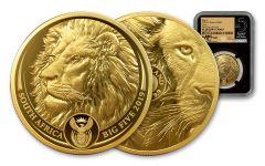 SA 2019 1OZ GOLD BIG 5 LION NGC PF70UC FDI TUMI