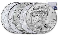 2019 $1 1-oz Silver Eagle 5-pc Type Set