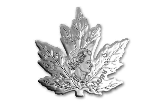 2015 1 Oz Silver Cut Out Maple Leaf Proof Govmint Com