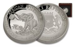 2016 Somalia 100 Shillings Elephant High Relief Proof