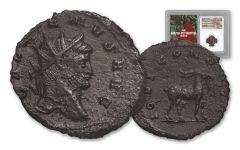 253-268 AD Roman Bronze South Petherton Hoard Gallienus NGC Choice-XF