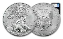 2018-W 1 Dollar 1-oz Burnished Silver Eagle NGC MS70 First Day Of Issue - Black