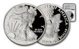 2017-W 1 Dollar 1-oz Silver Eagle Proof NGC PF70UCAM Silver Foil Label