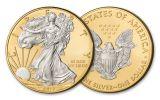 2017 1 Dollar 1-oz Silver Eagle BU With 24kt Gold Gilded Background