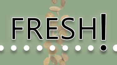 Fresh Coins