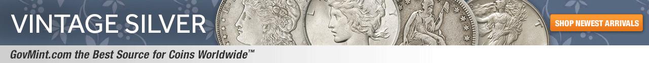Vintage Silver Category Banner