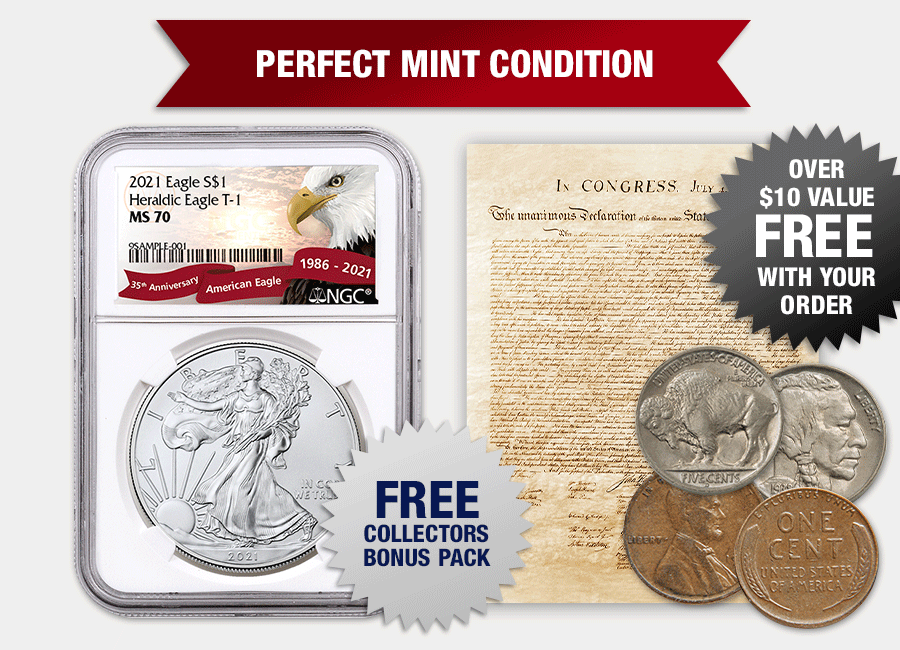 2021 American Silver Eagle MS70 and Collector's Guide with Nickel and Penny