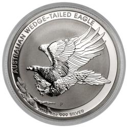 2014 Wedge Tailed Eagle
