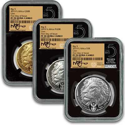 Big 5 lion 3 coin set