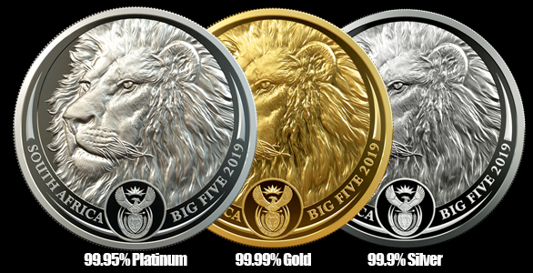 Big 5 Lion coins