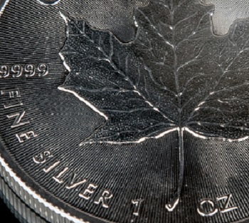 Traditional Silver Maple Leaf without a Mint Mark