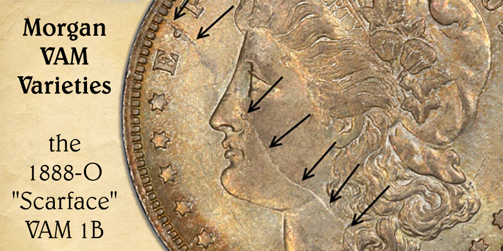 Morgan Dollar - VAM Varieties